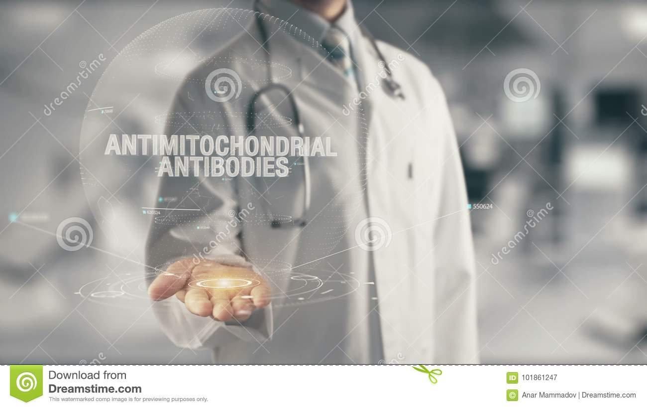 Doctor holding in hand Antimitochondrial Antibodies