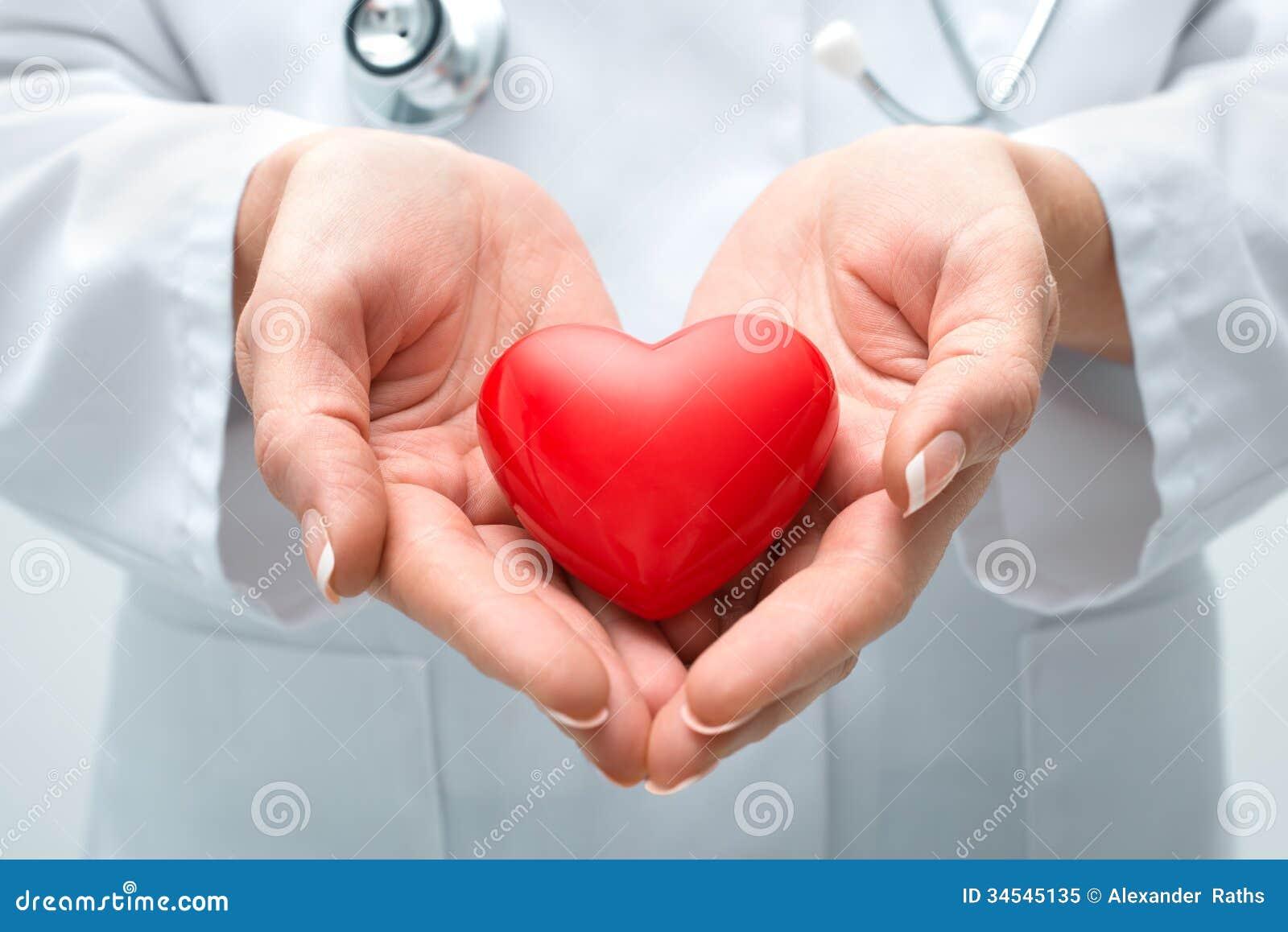 Doctor que lleva a cabo el corazón