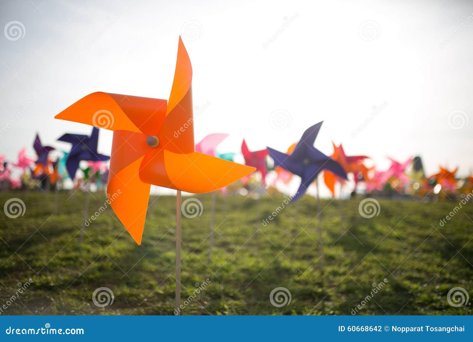 Document windmolen