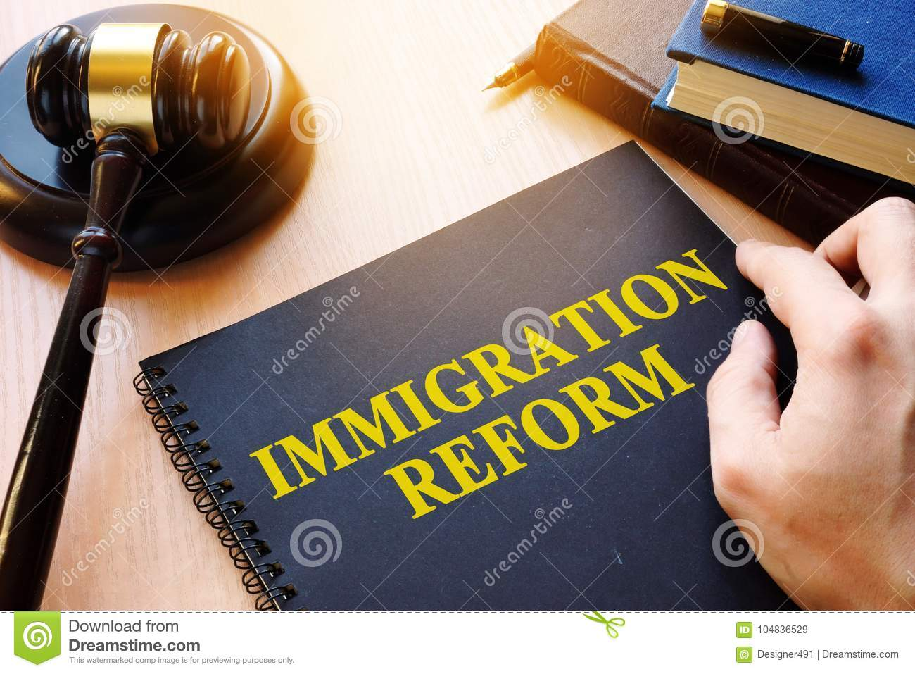 Immigration reform and gavel on a desk.