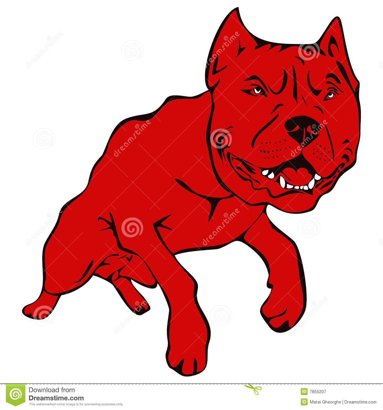 Dog American Pit Bull Terrier Illustration Royalty Free Stock ...