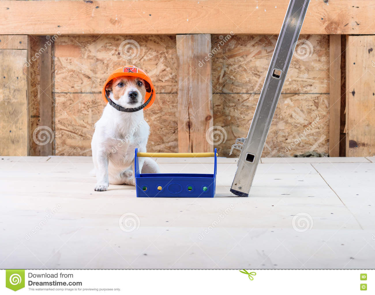 Dog as funny builder wearing helmet at construction site for Concept home com