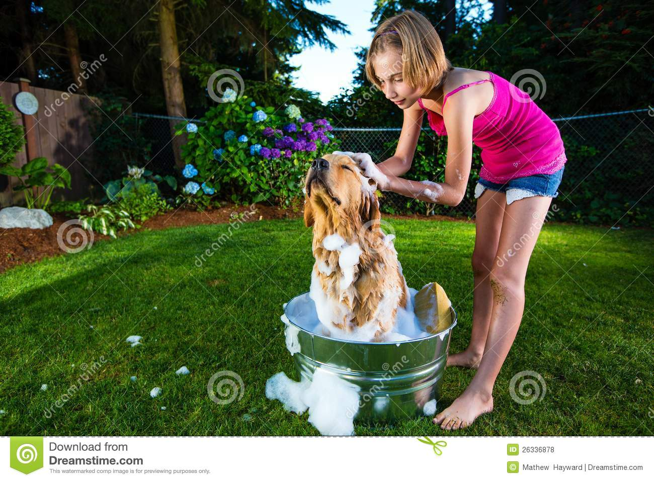 Los 19 Gatos Mas Torpes De 2014 together with 451837775088020824 additionally Cute Cartoon Animals Page 1 as well Royalty Free Stock Image Dog Shower Pug Taking Bath Image30409256 also Cute Cartoon Animals Page 2. on funny dog bath