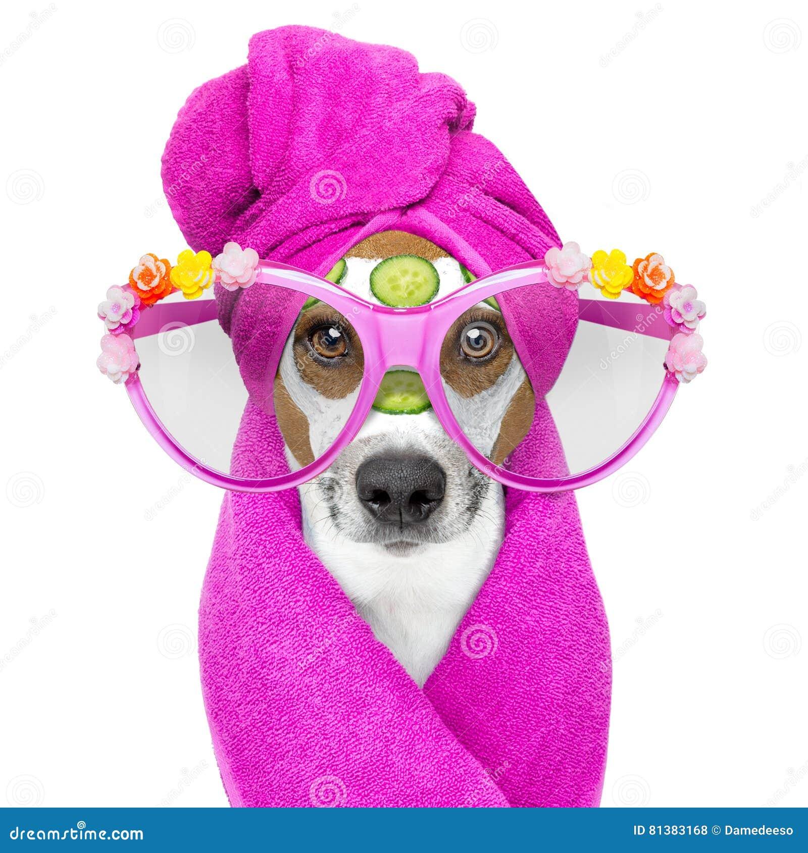 Косметика для собак spa