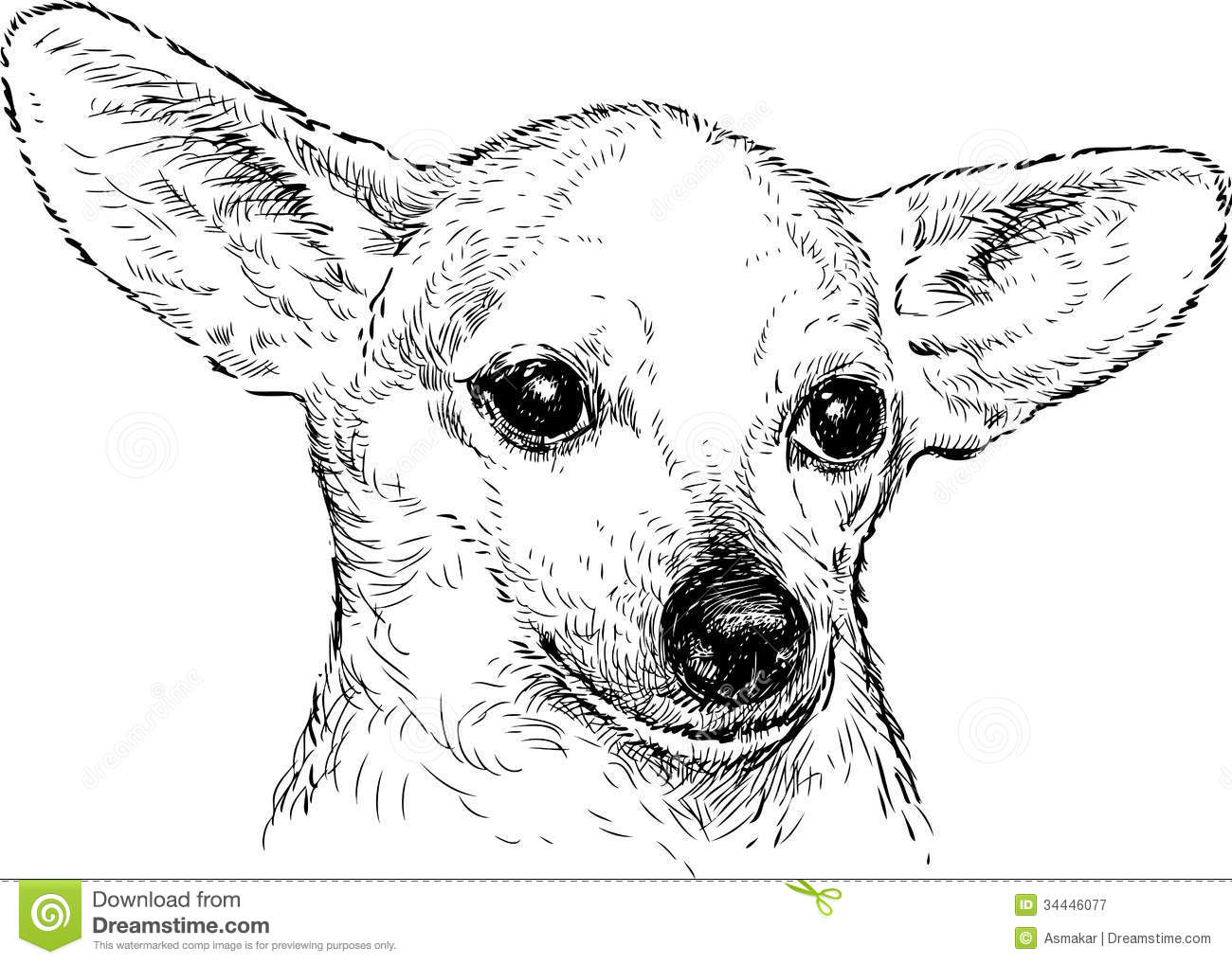 Dog With Big Ears Stock Vector Illustration Of Portrait 34446077