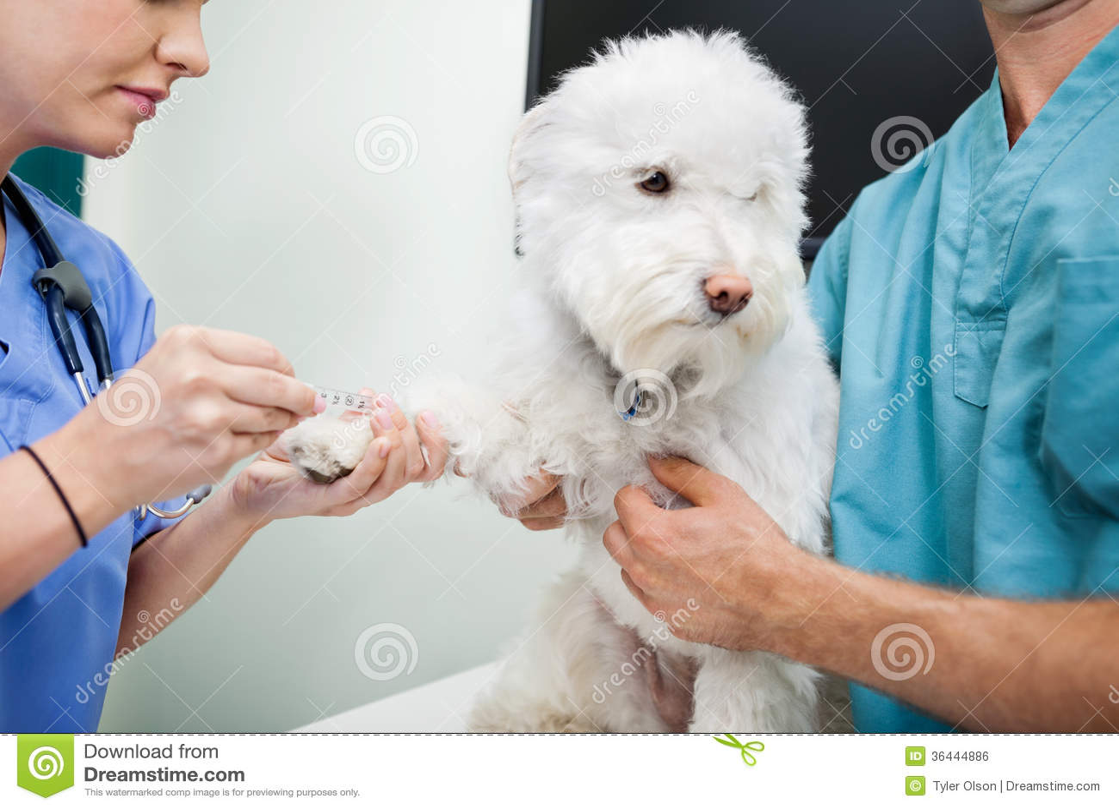 2 doctors team up on blonde milf