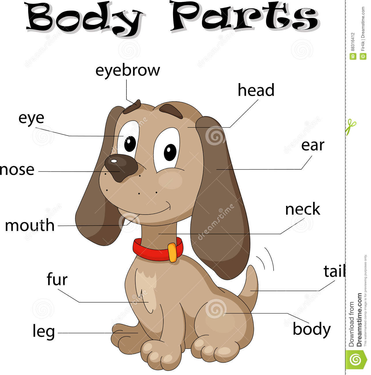 Dog body parts stock vector. Illustration of isolated - 88316412