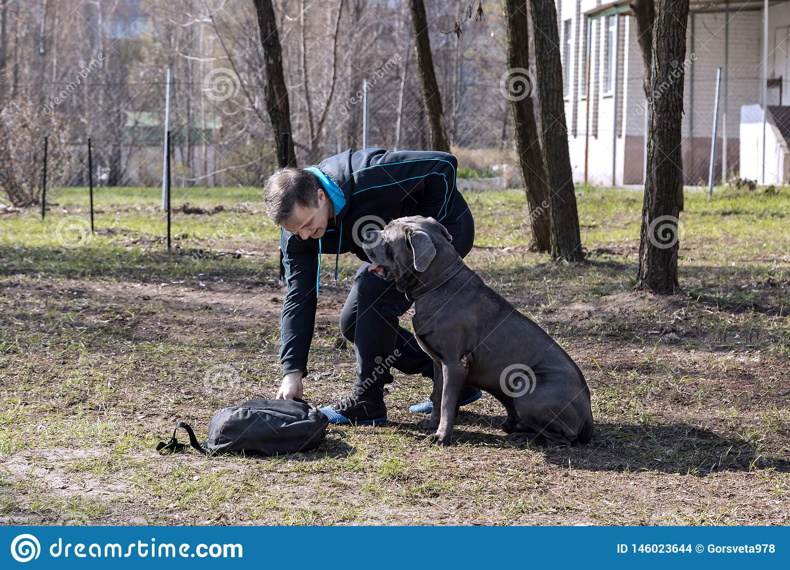 Dog With The Owner On The Training Site In Clear Spring
