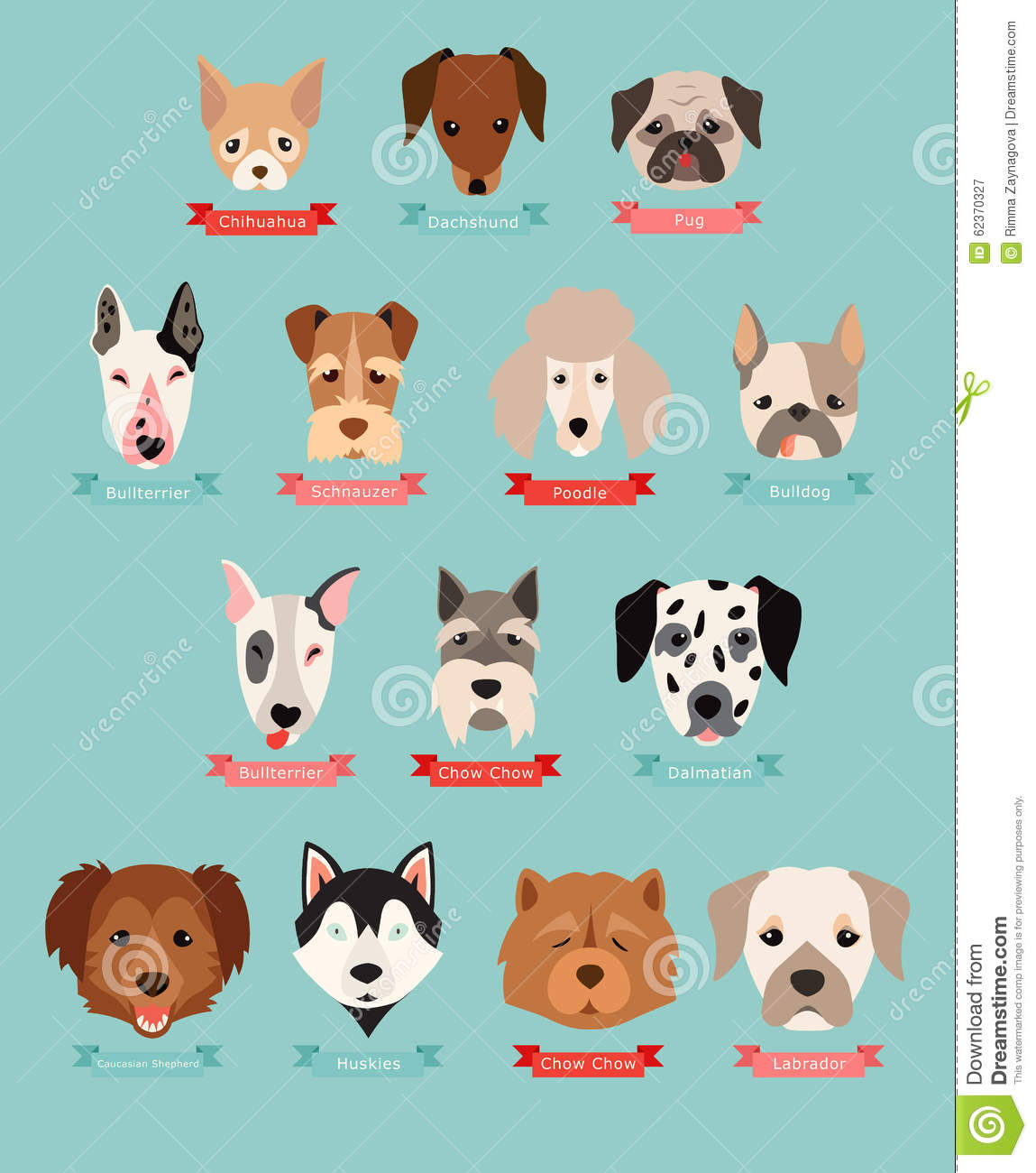 Dog breeds collection with ribbon and name, vector flat illustrations ...