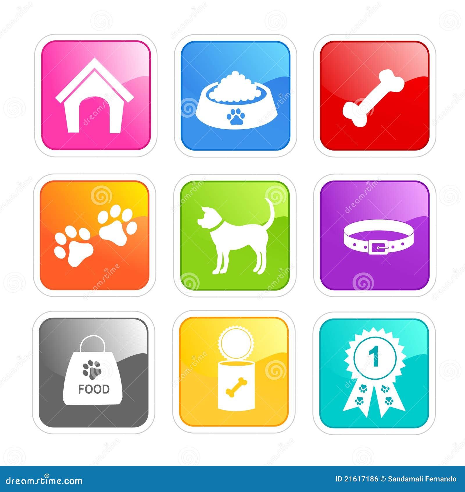 Dog Care Icons on Orange Dog Collar And Leash