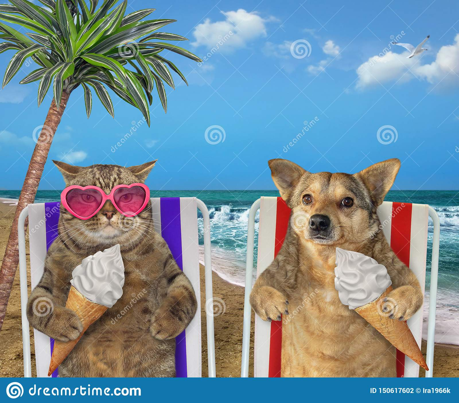 Dog and cat eating ice cream under a palm