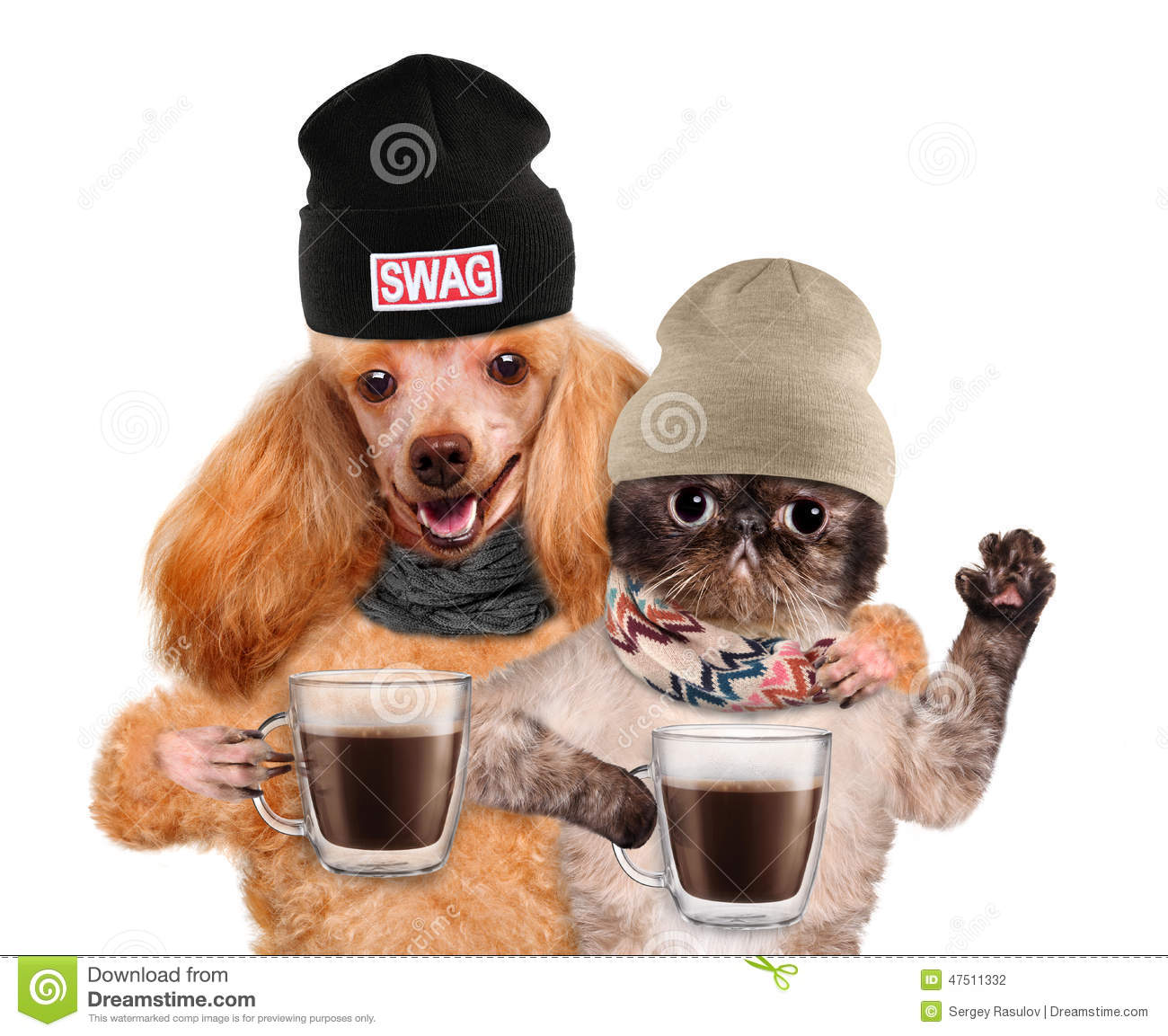 Dogs Holding Paws
