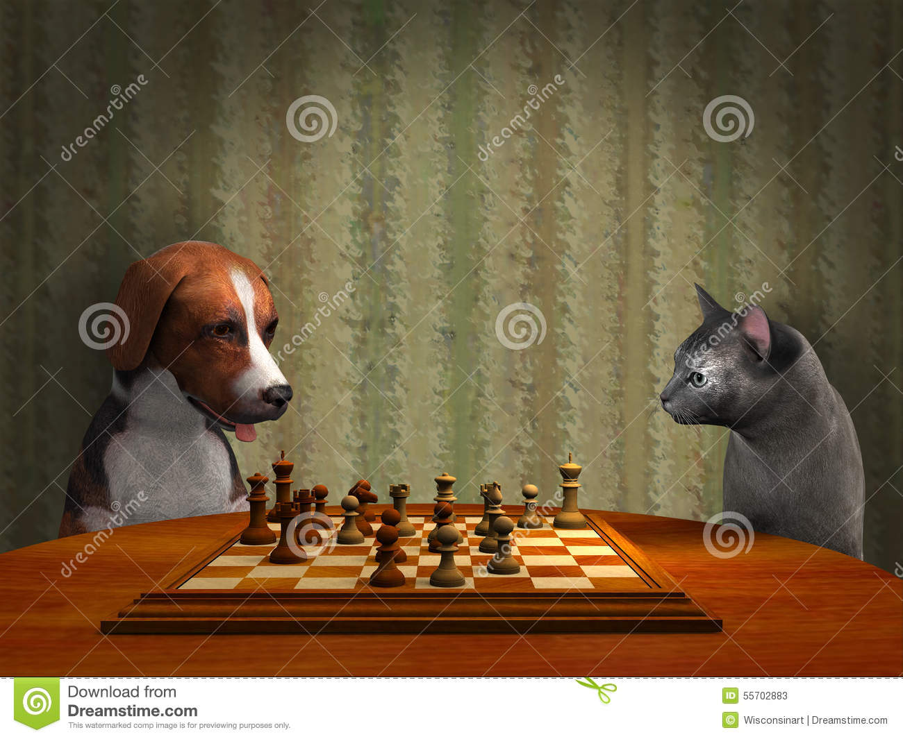 games for cats and dogs to play together