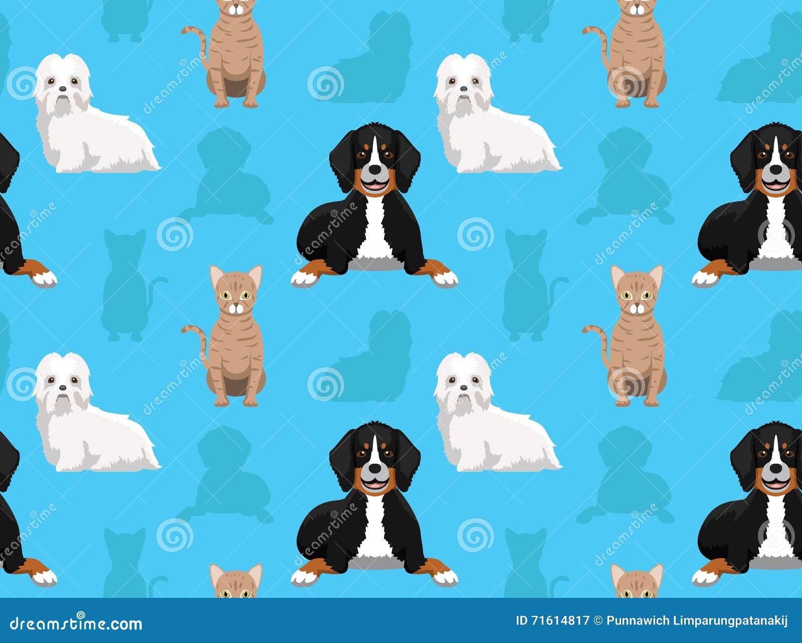 Dog Cat Wallpaper 2