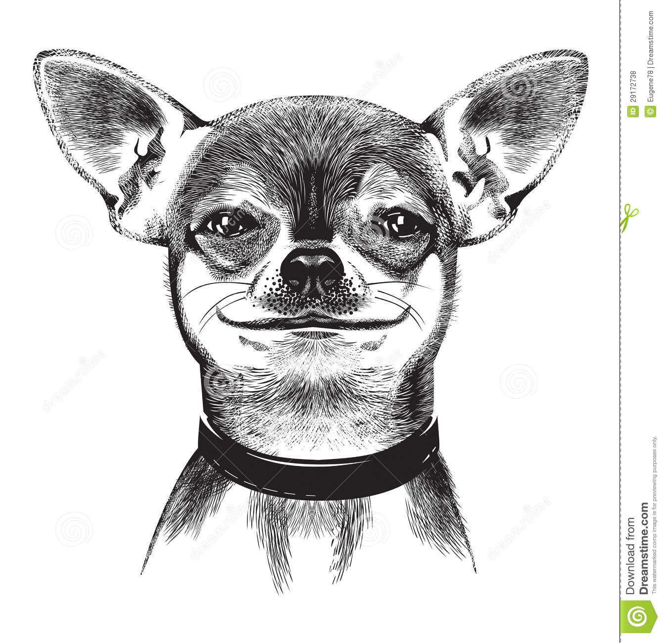Dog Chihuahua Illustration Stock Vector Illustration Of Doggy Creature 29172738