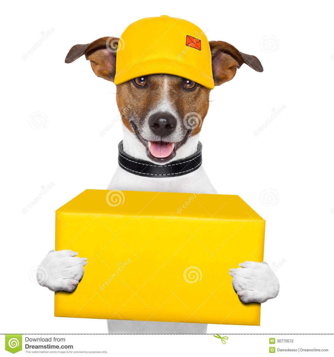 Dog Delivery Post Stock Photo. Image Of Cardboard, Driver