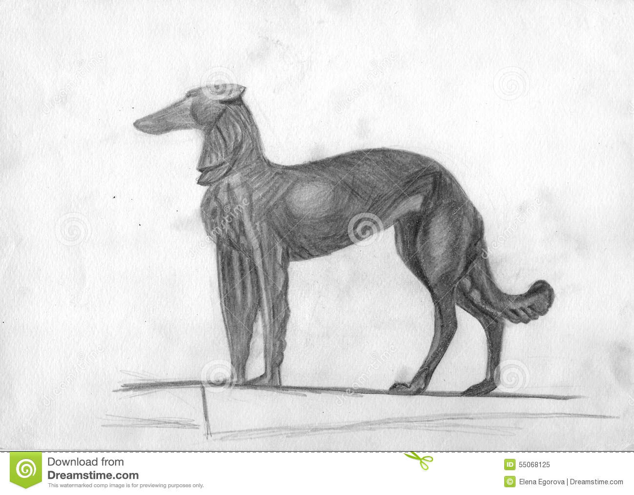 Dog Drawn With Pencil Stock Illustration Illustration Of Shading