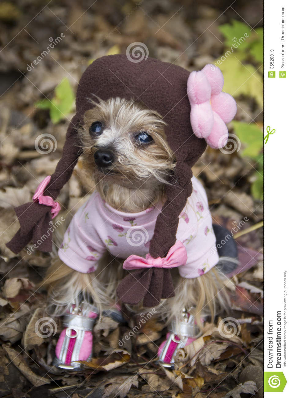 Girl Puppy Halloween Costume