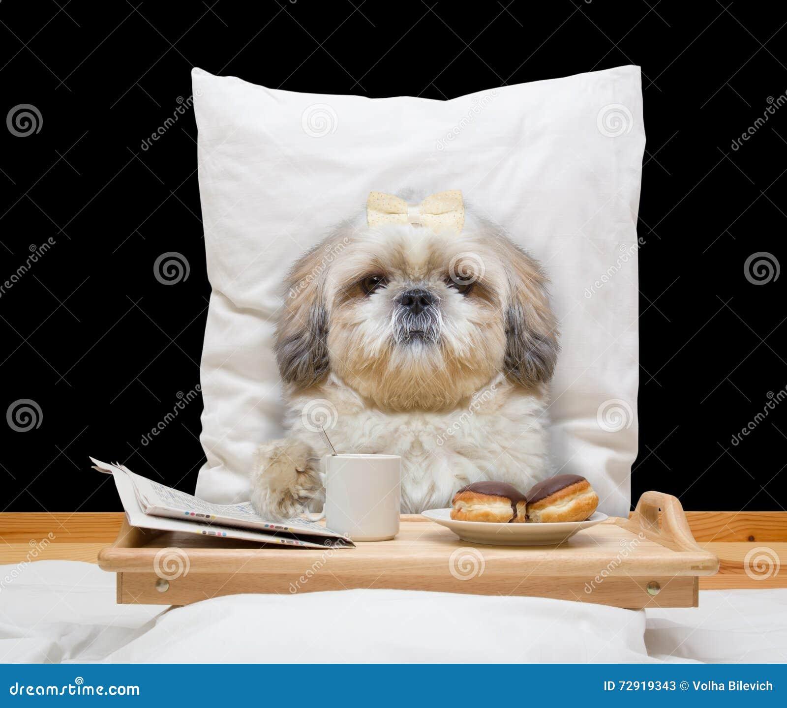 Dog Eats Bread Tie