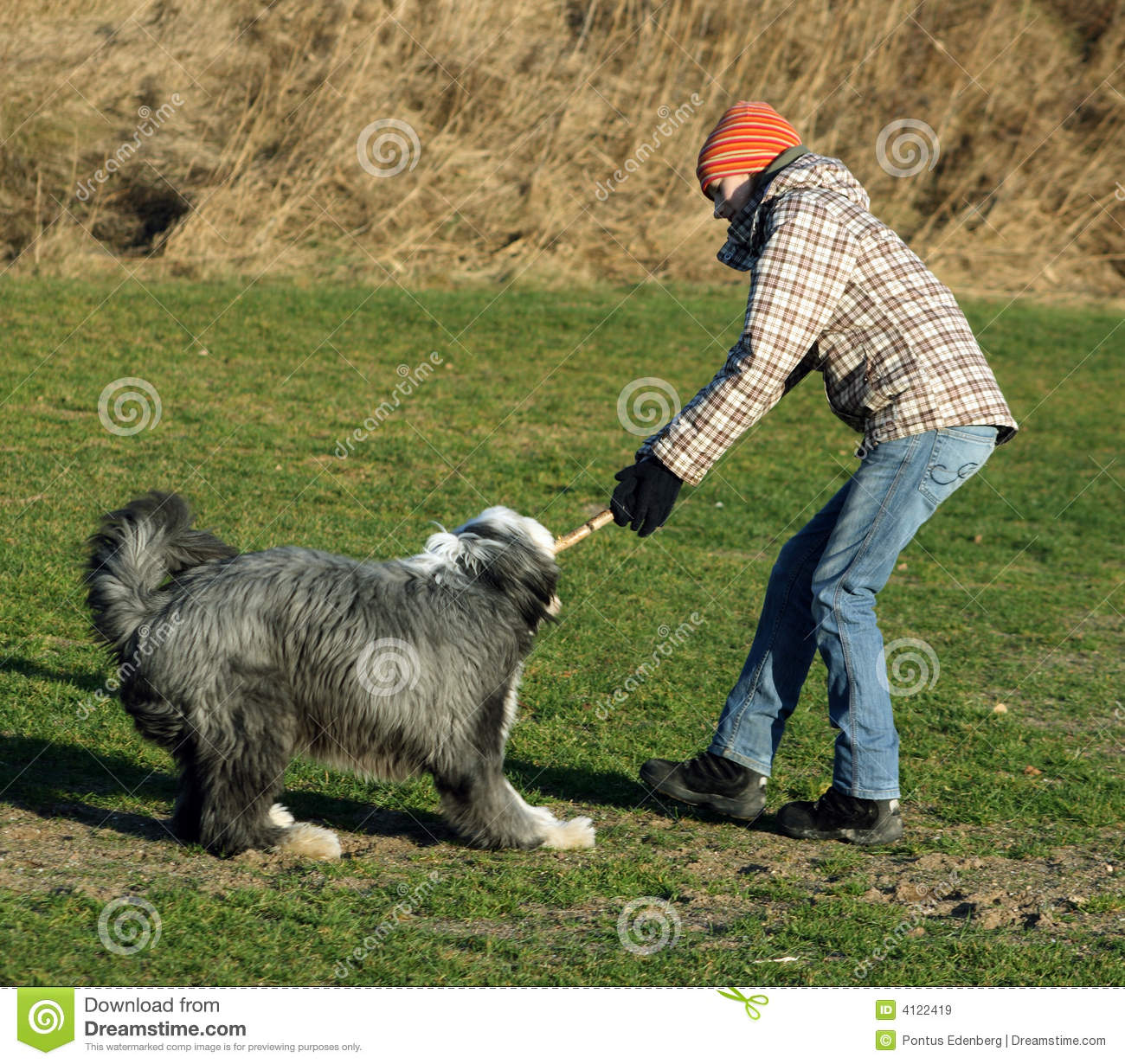 Dog and girl fighting over a stick
