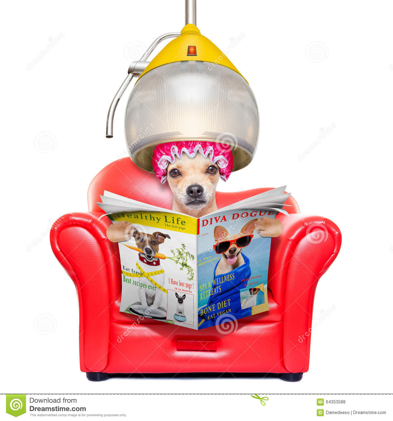 Dog At The Hairdressers Stock Photography Cartoondealer