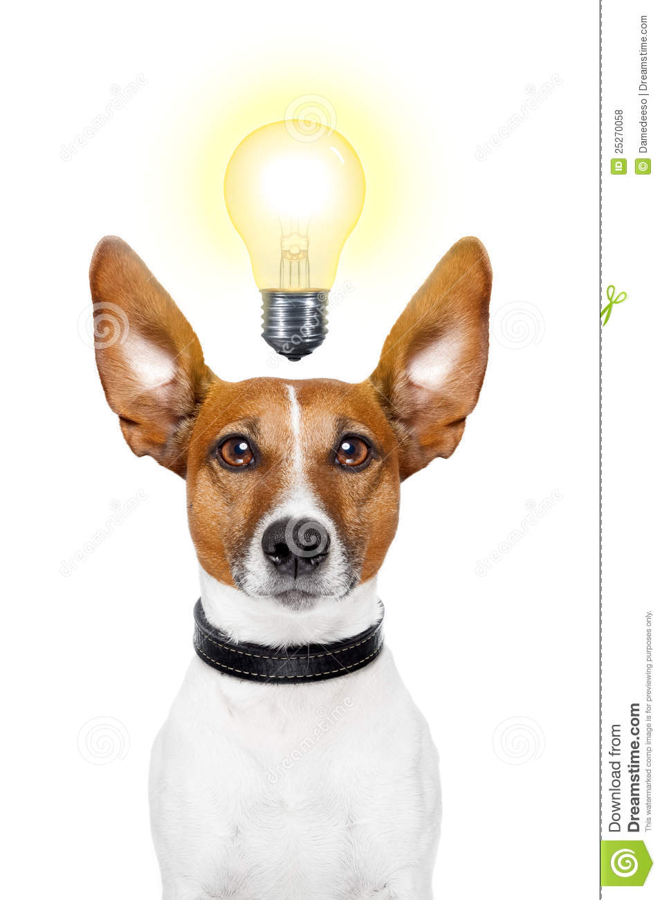 Dog Idea Royalty Free ...