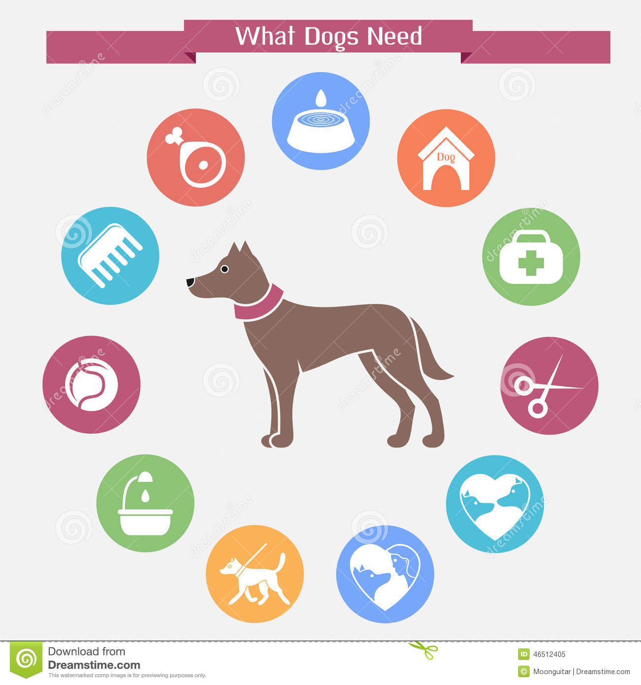 Dog infographics and icon set stock vector image 46512405 for What a dog needs
