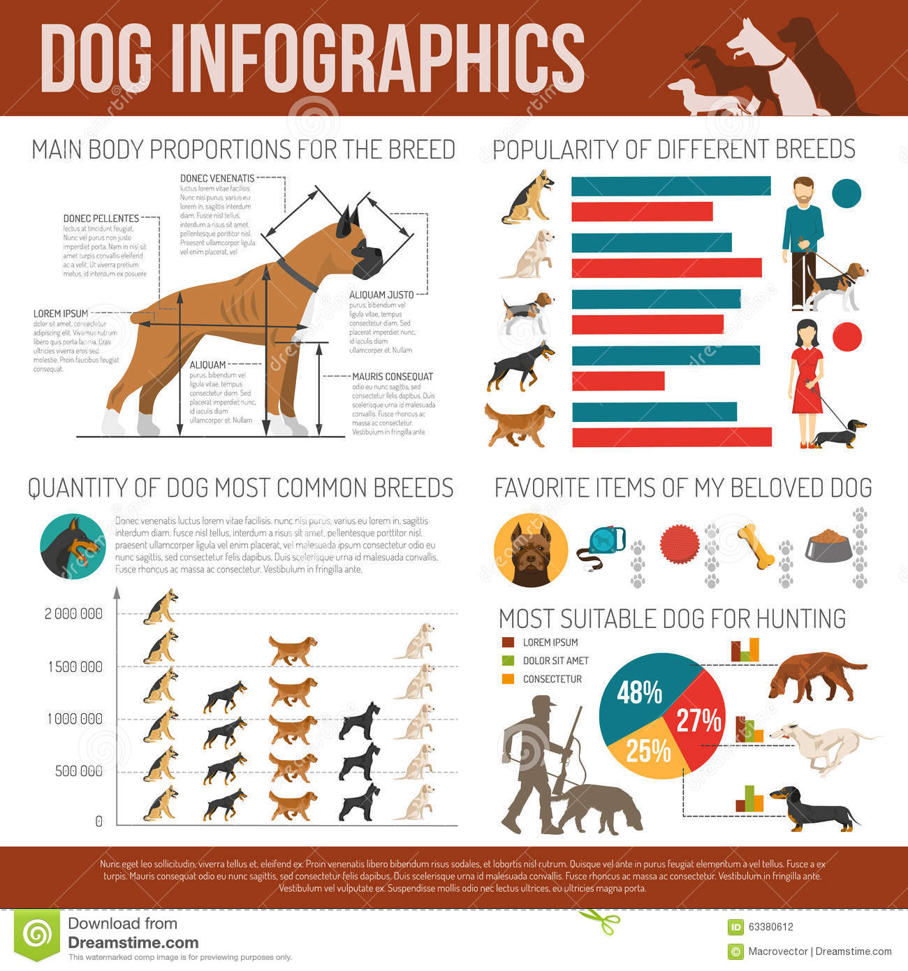 Dog Infographics Set Stock Vector Image Of Elements