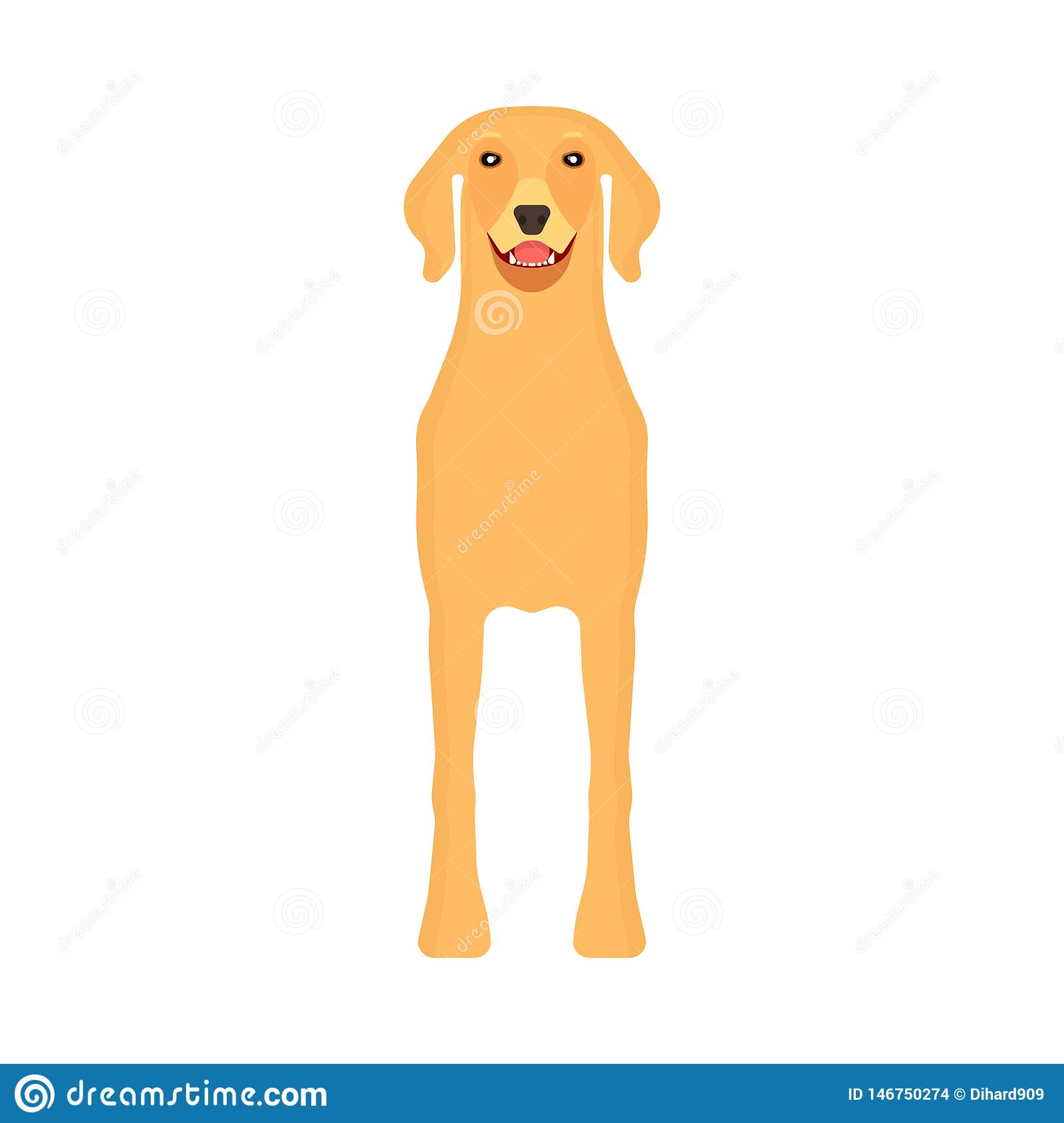 Dog labrador animal pet vector icon front view. Isolated puppy cute cartoon happy friend. Brown standing canine silhouette