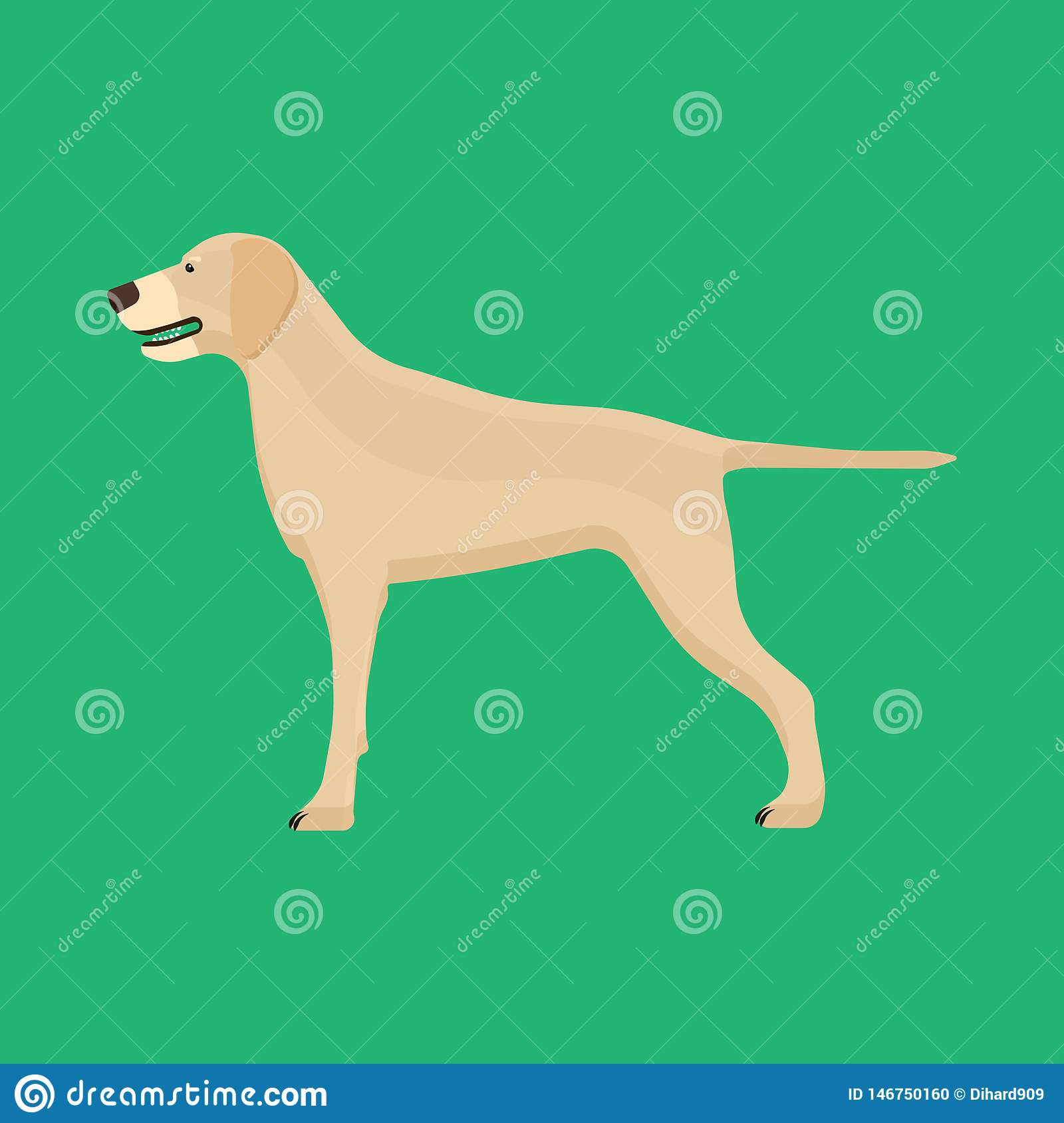 Dog labrador animal pet vector icon side view. Isolated puppy cute cartoon happy friend. Brown standing canine silhouette