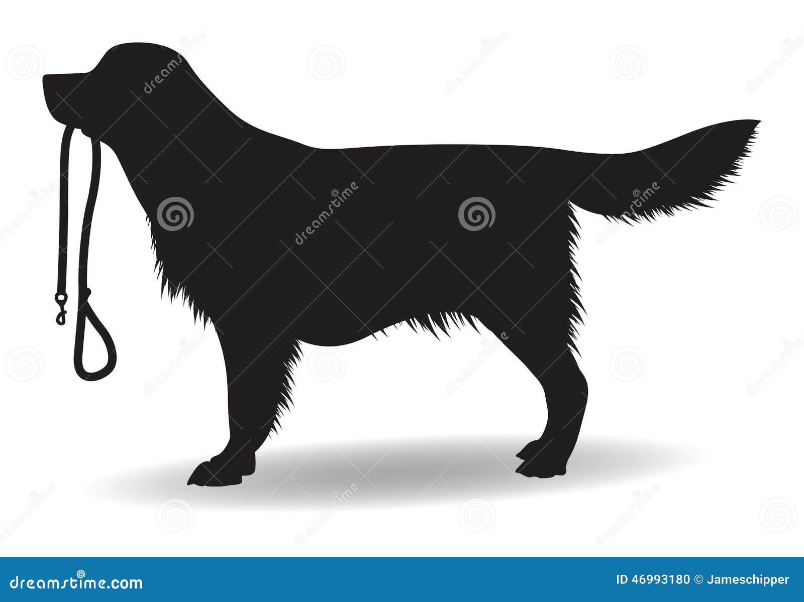 Big W Dog Lead