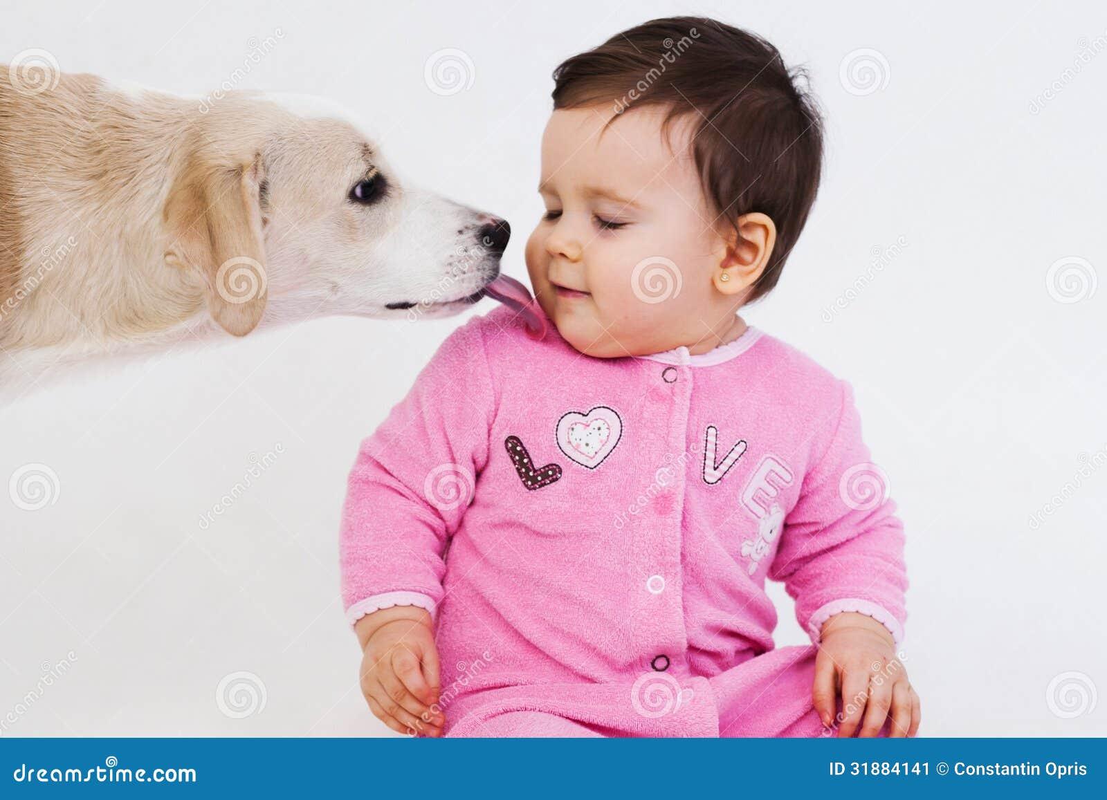 Dog Licking Baby Face Stock Image Image 31884141