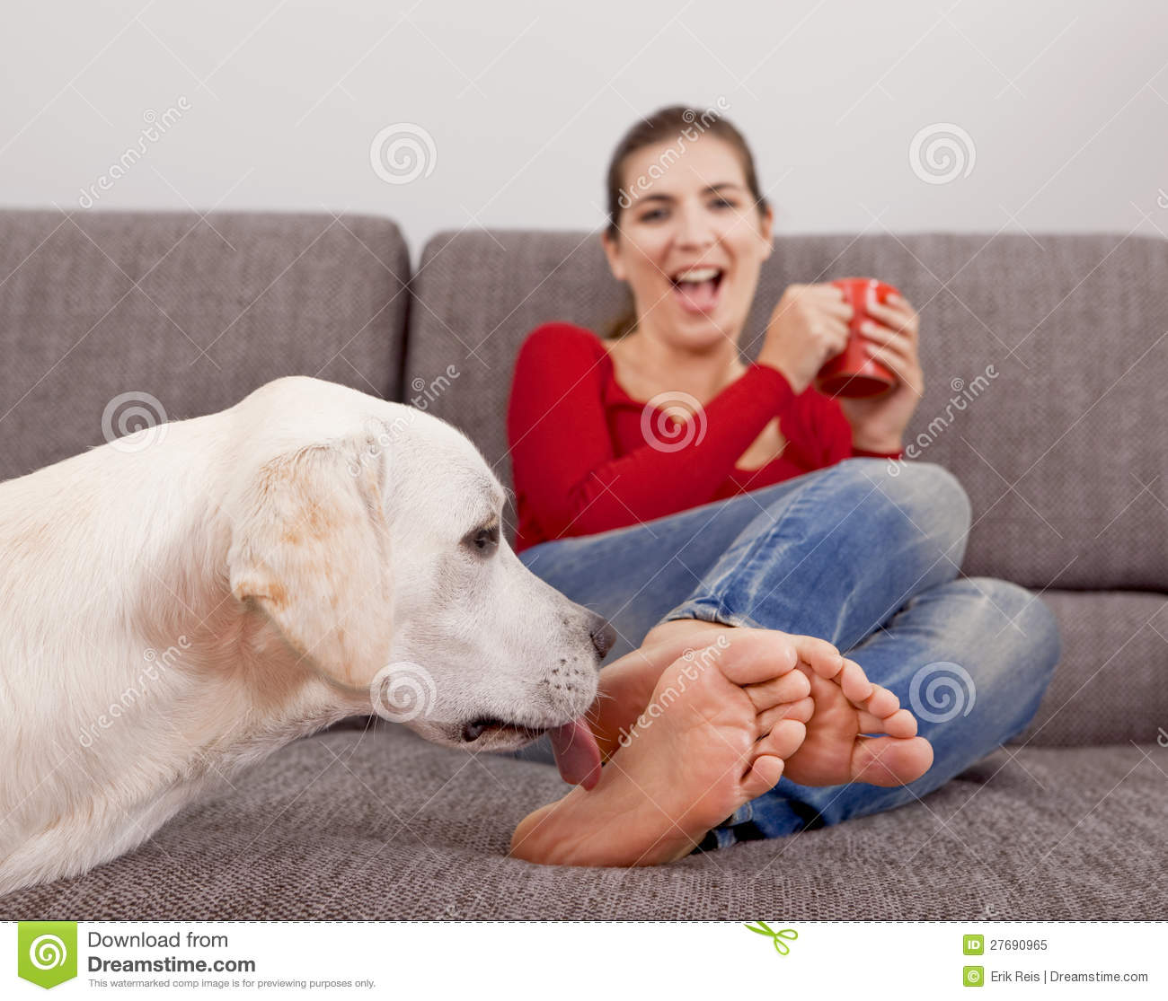 Dog Licking The Toes Royalty Free Stock Photo Image