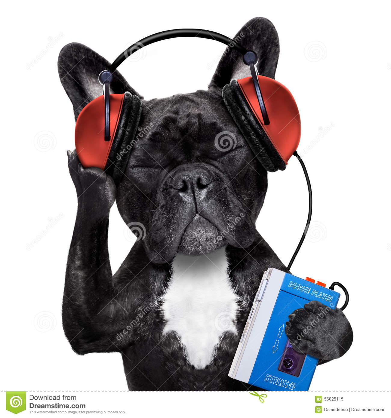 29194 likewise 26317 as well 210091 furthermore Stock Photo Dog Listening Music French Bulldog To Oldies Headphones Earphones Retro Cassette Tape Recorder Relaxing Eyes Image56825115 in addition Old Fashioned Retro Radios. on old radio portable