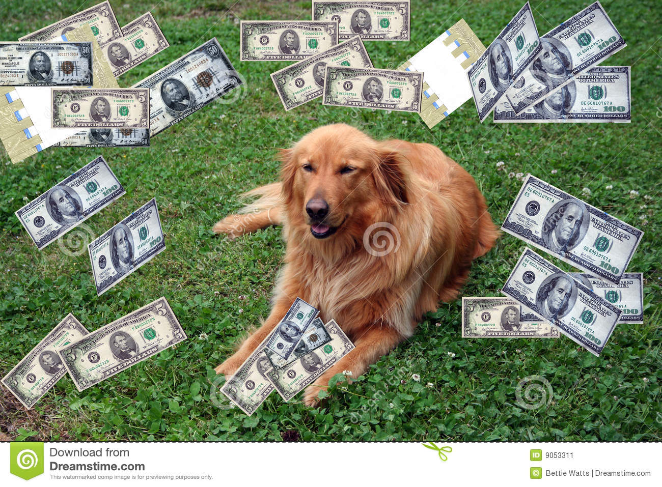dog with money stock image image 9053311 dog sled clipart free dog sled team clipart