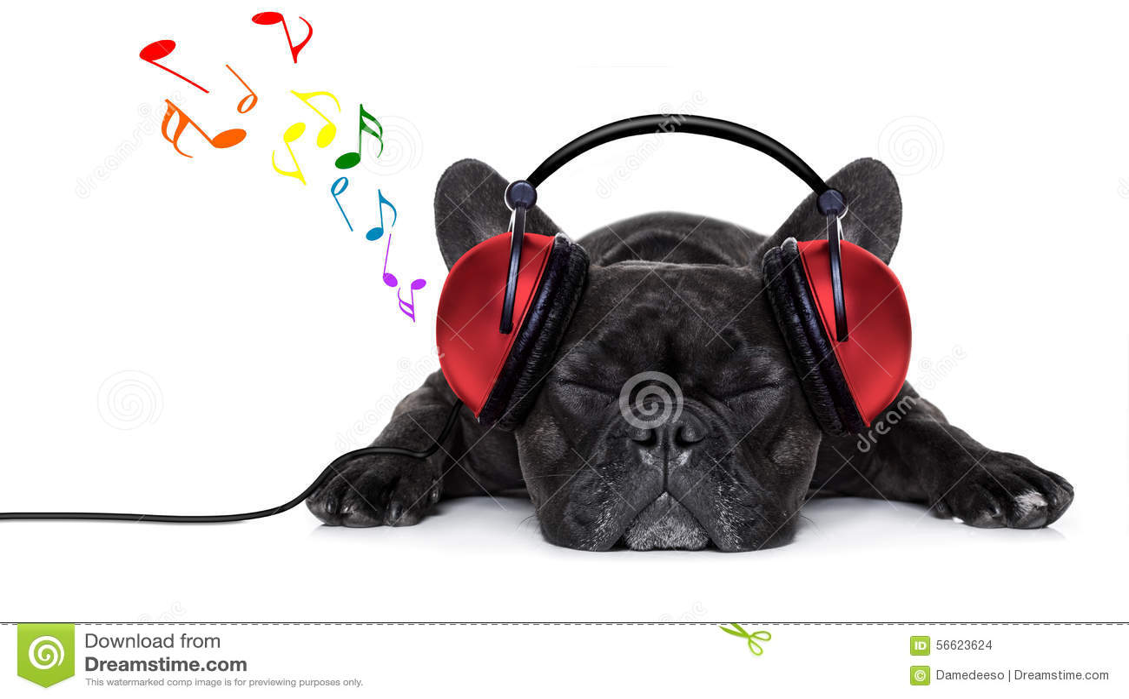 Dog Music Stock Photo - Image: 56623624 Relaxing Dog Music Audio