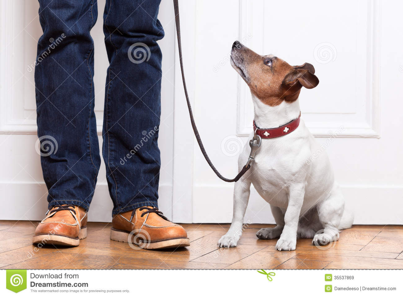 Dog And Owner Royalty Free Stock Images Image 35537869