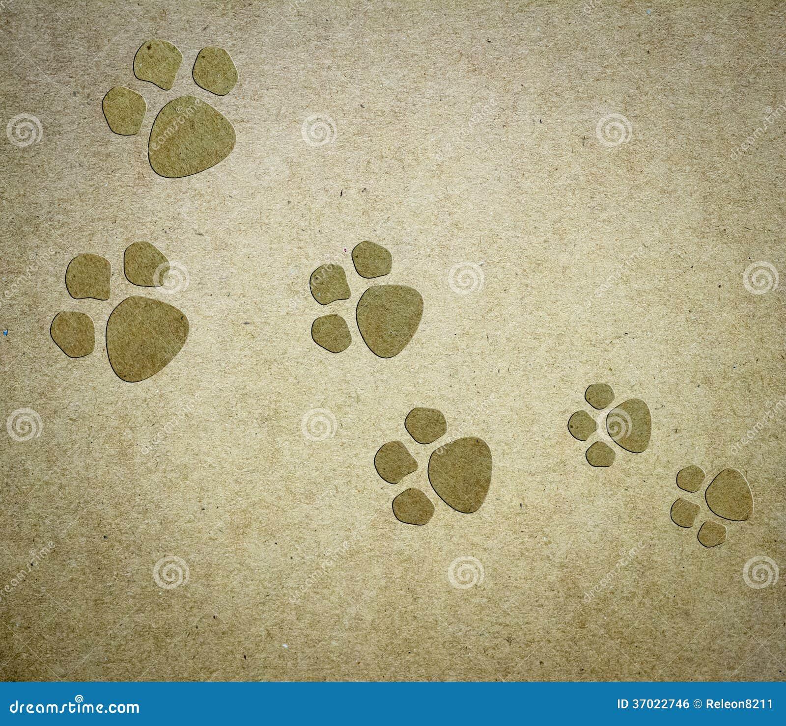 Dog Paper Background Royalty Free Stock Image Image