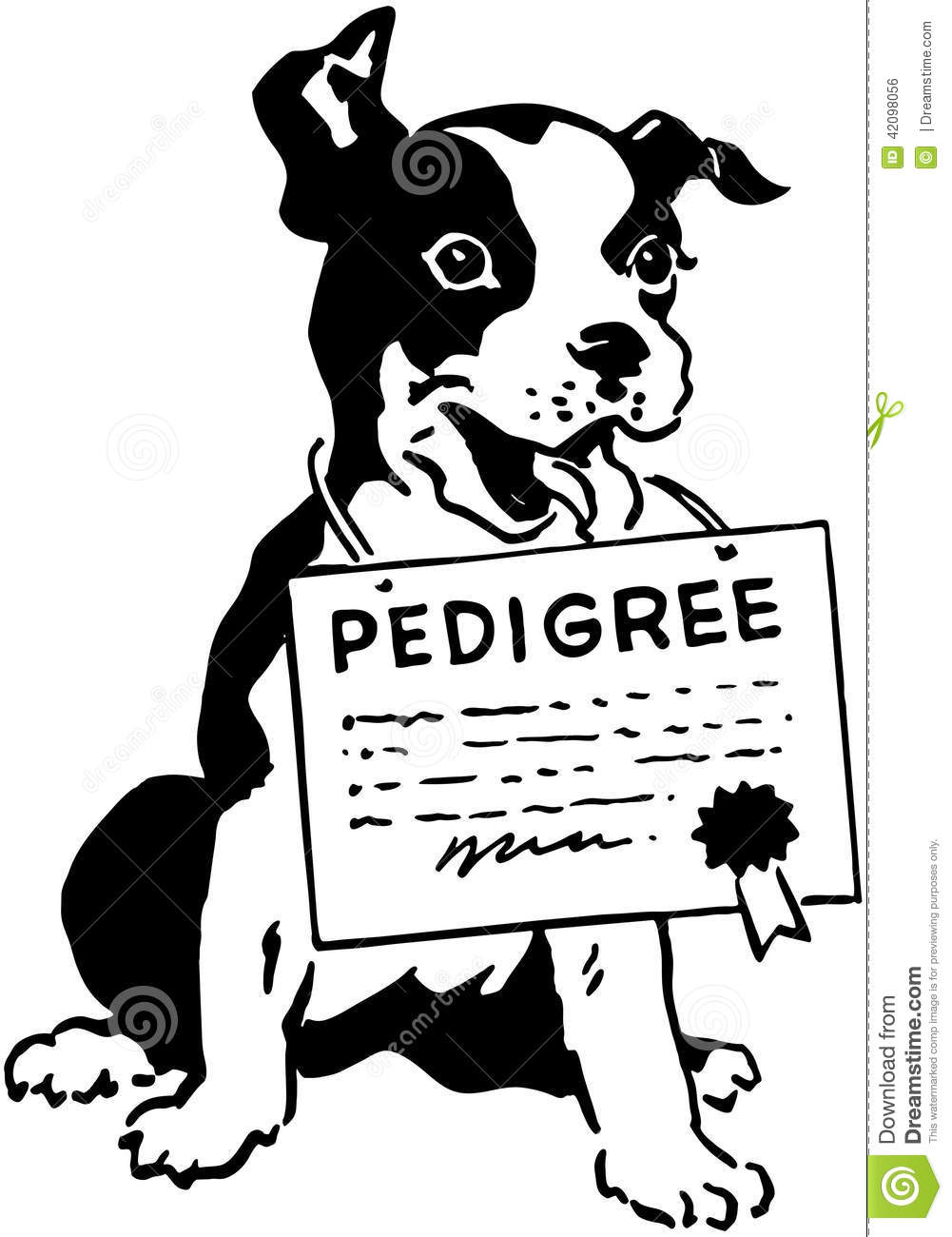 Dog With Pedigree Certificate Stock Vector Illustration Of