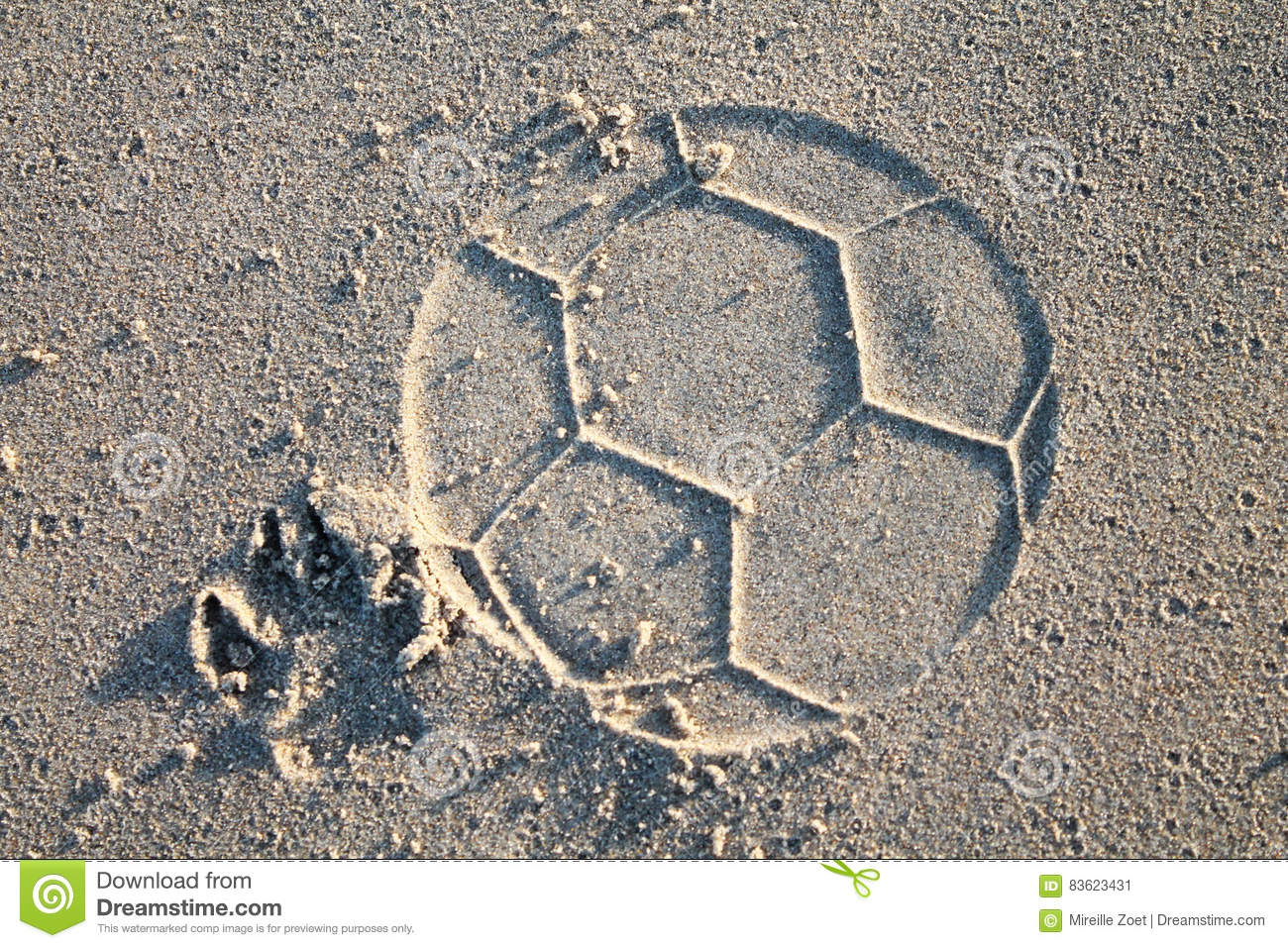 Download Dog Playing Soccer On Beach Stock Image - Image of nature, print: 83623431