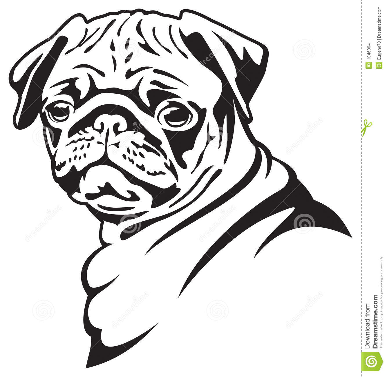 Pug Face Line Drawing : Dog pug stock vector illustration of portrait animal