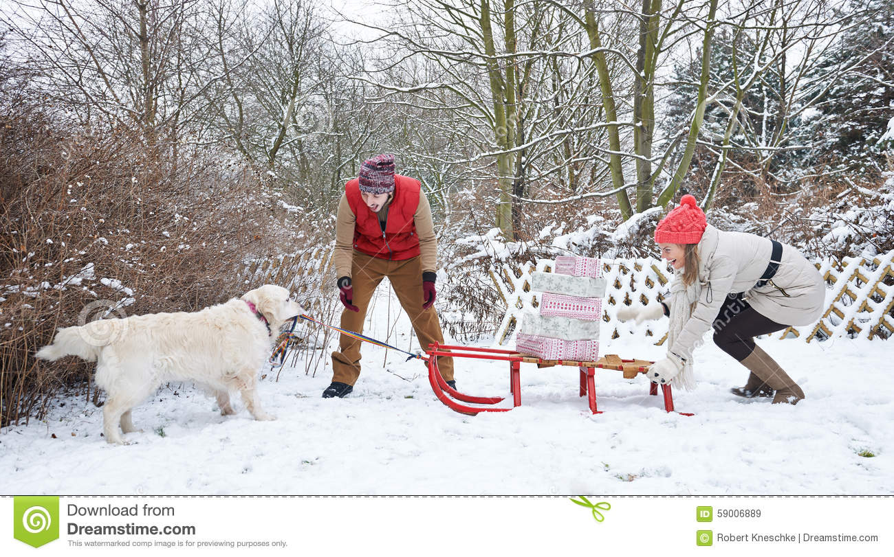 dog pulling sled with christmas gifts stock photo image dog sled clip art images dog sled team clipart