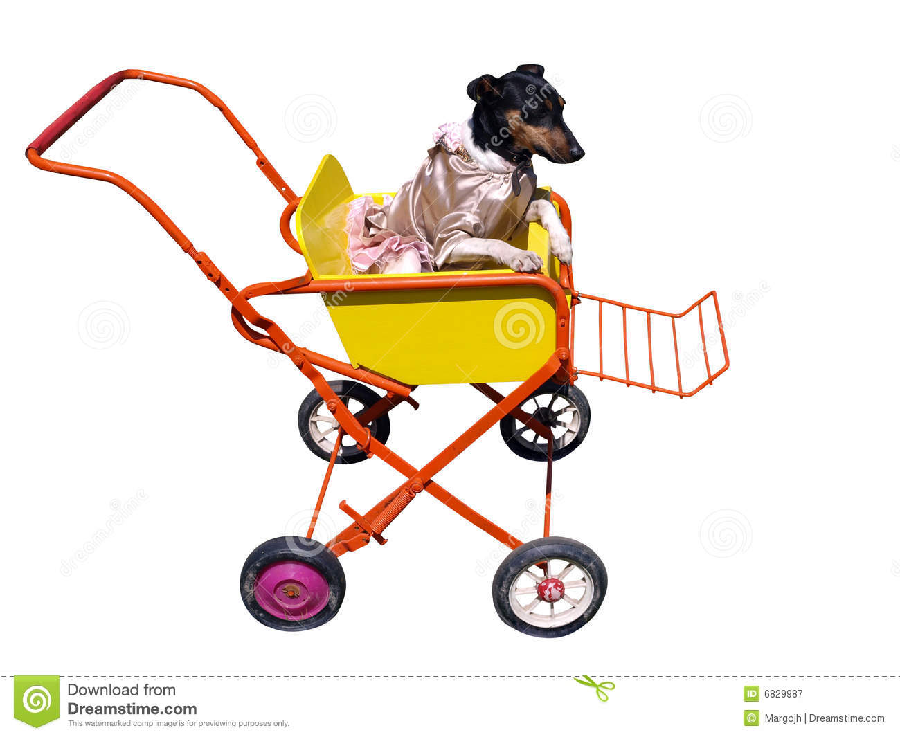 Dog In Pushchair Royalty Free Stock Photography - Image: 6829987