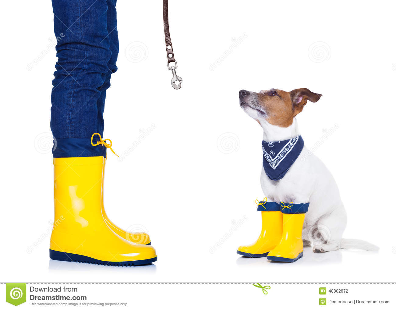 Red Rain Boots Clipart Dog Ready For A Walk I...