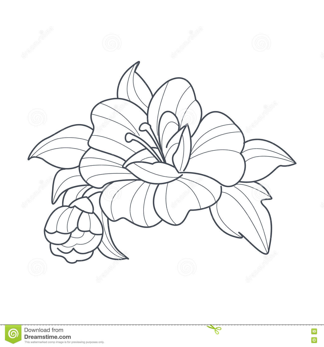 Dog Rose Flower Monochrome Drawing For Coloring Book Stock Vector