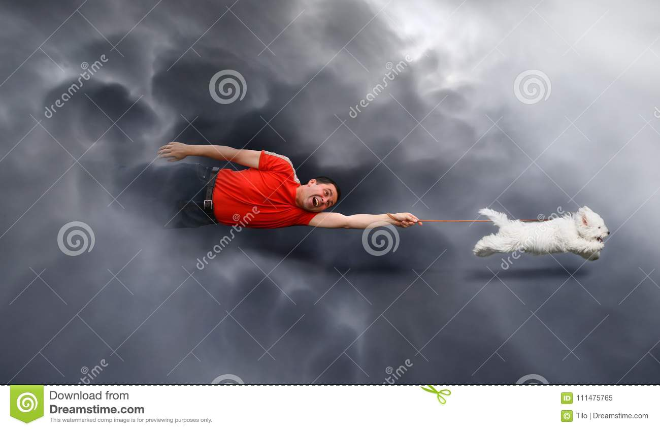 Canine education, dragged through the clouds