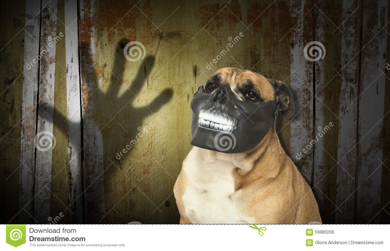 Dog In A Scary Teeth Mask With Digital Backdrop Stock Photo ...