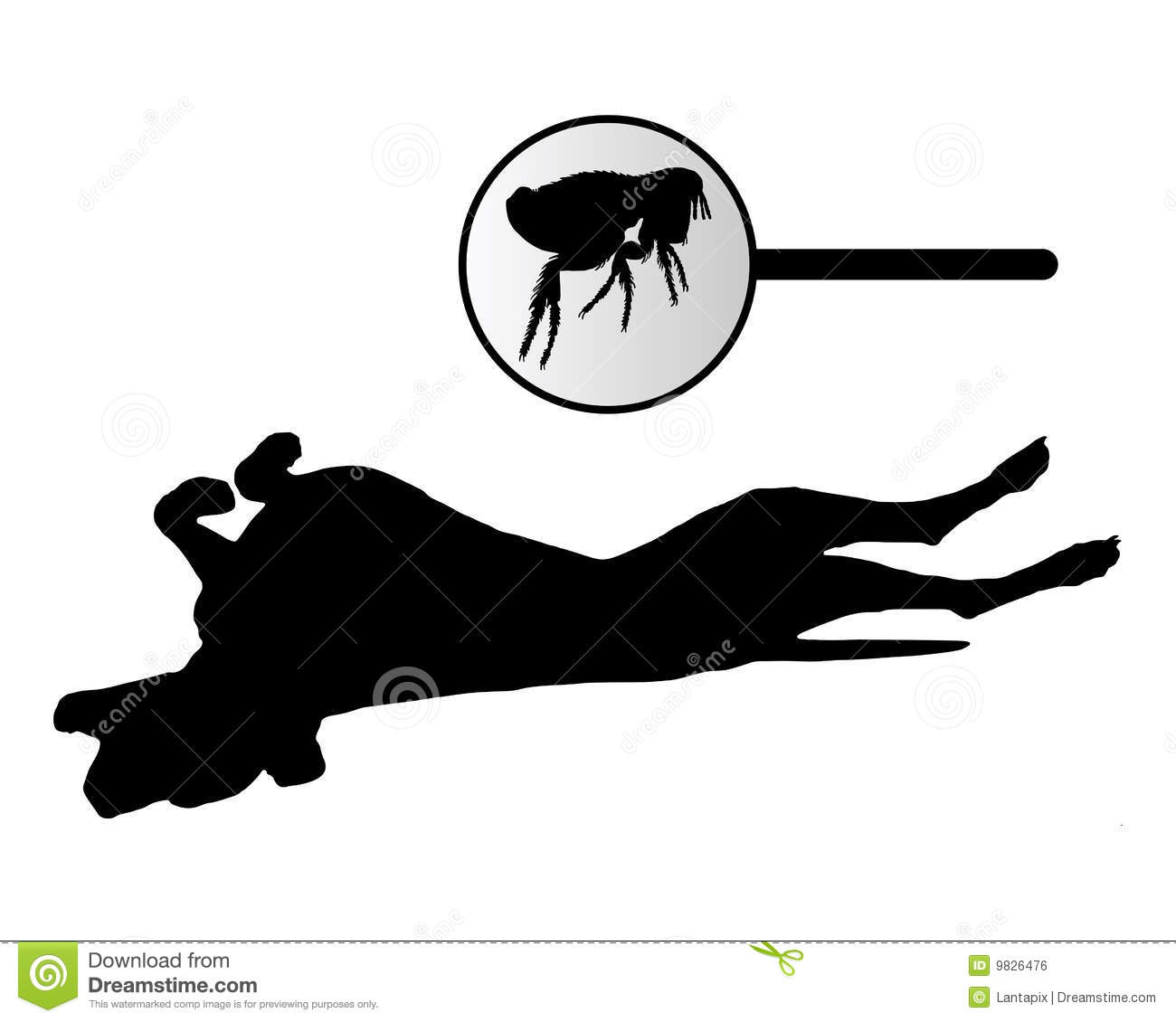 Dog Biting Rugs: Dog Is Scratching Its Back Because Of Fleas Bite Stock