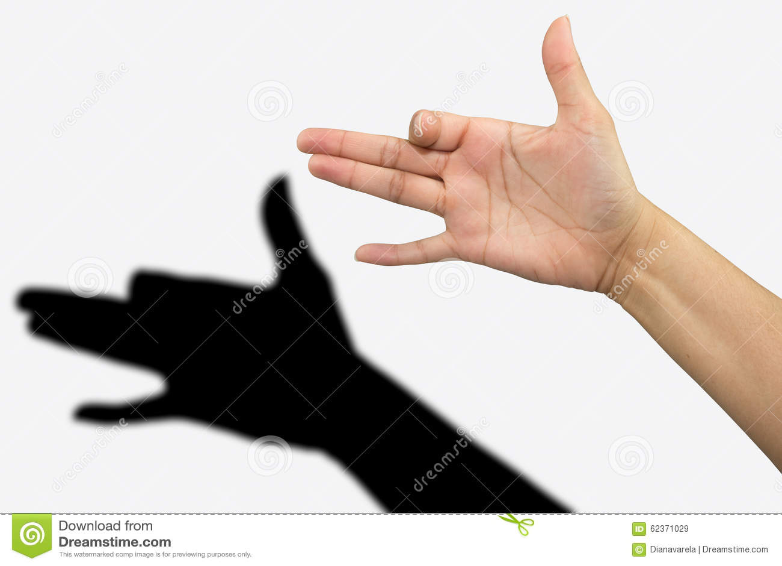 hand shadow dog shadows t shadow puppets hand