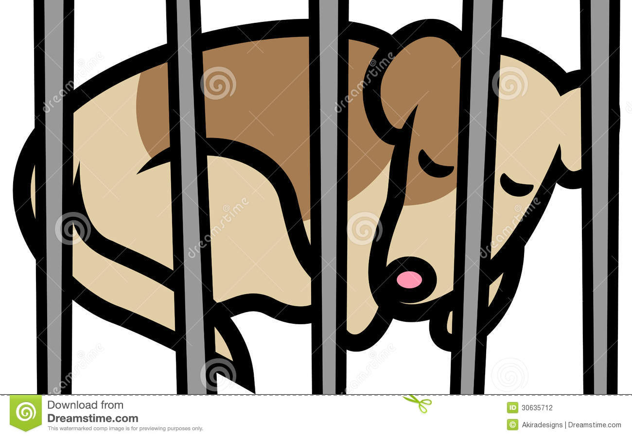 Dog In Shelter Stock Photography Image 30635712
